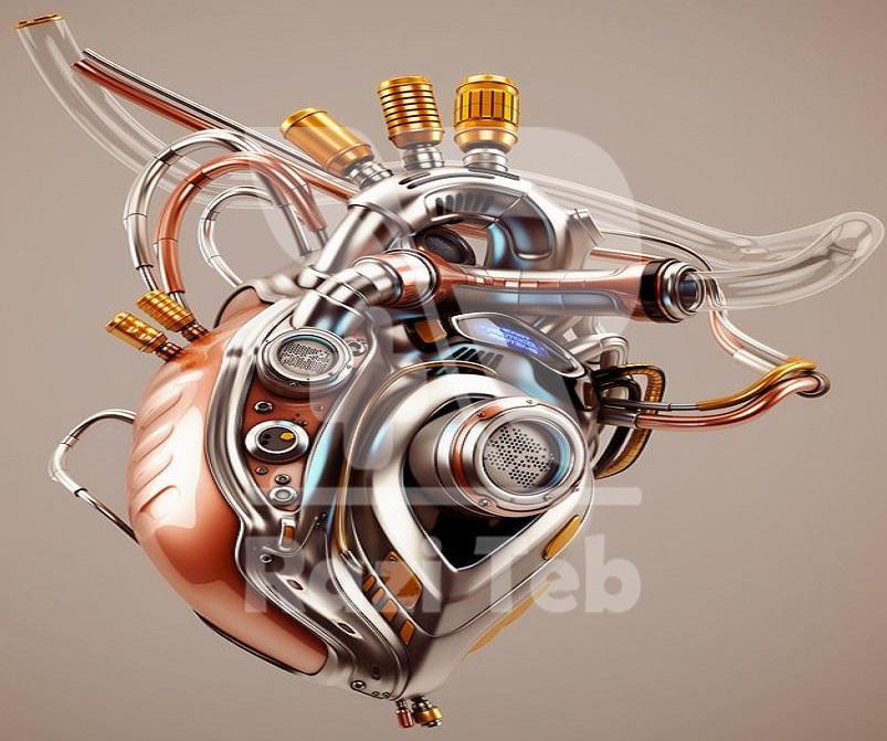 قلب منبع حرارتی بدن طبیعت انسان (مزاج اعضاء)